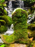 Moss covered cowboy boot. A moss covered cowboy boot in front of a lush tranquil waterfall stock image
