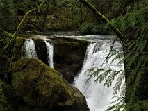 Moss covered frame for Whatcom Falls stock photo