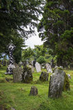 Moss-covered gravestones. Ireland Stock Photos