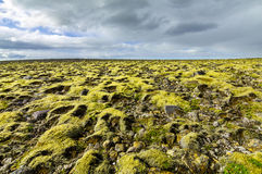 Moss covered landscape with far view to horizon and clouds. royalty free stock image