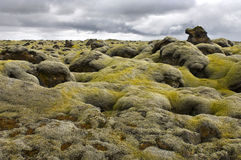 Moss covered lava field Stock Photo