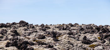 Moss covered lava field Stock Image