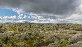 Moss-covered lava fields Royalty Free Stock Photo