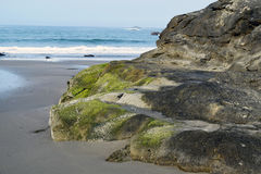Moss Covered Ocean Outcrop. Green moss covered coastal rock formation in Southern Oregon Stock Image