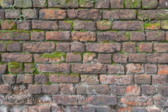 Moss covered old brick wall Royalty Free Stock Photo