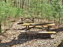 Moss Covered Picnic Tables i övergiven tältplats Fotografering för Bildbyråer