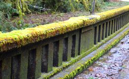 Moss covered railing Royalty Free Stock Photography