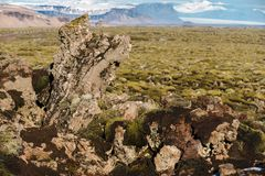 Moss-covered rock outcroppings in the Eldrhaun lava fields of Iceland. With mountains and glaciers in the background stock photos