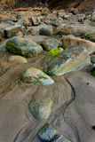 Moss covered rocks on beach. Stock Photos