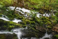 Moss covered rocks and boulders along  river Royalty Free Stock Photo