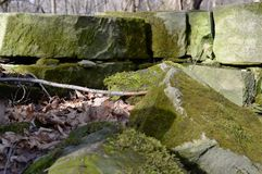 Moss Covered Rocks Royalty Free Stock Images