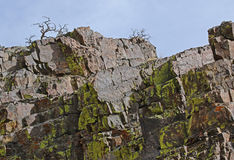 Moss covered rocks Royalty Free Stock Photography