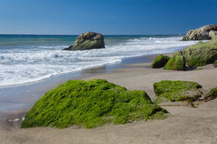 Moss Covered Rocks at Leo Carillo State Beach Royalty Free Stock Images