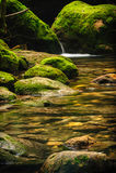 Moss covered rocks near cascade in rains forest. Stock Photos