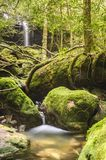 Moss covered rocks near wallterfall in rains forest. Stock Image