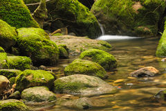 Moss covered rocks near waterfall in rains forest. Stock Photos