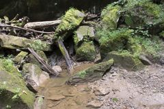 Moss covered rocks and small stream. Large moss covered boulders piled up in a rugged hollow in West Virginia with a small creek flowing from the jumble of rocks royalty free stock photos