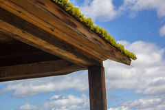 Moss covered roof Stock Image