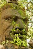 Moss covered Statue Stock Photography