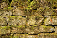 Moss Covered Stone Bricks Royalty Free Stock Photo