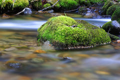 Moss-covered stone in mountain stream Stock Image