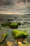 Moss covered stone in the sea Stock Photo