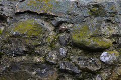 Moss covered stone wall Royalty Free Stock Photo