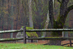 Moss covered wooden fence separating the property lines of a local farm royalty free stock photo