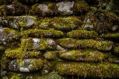 Moss Covers Stacked Rock Wall royaltyfri fotografi