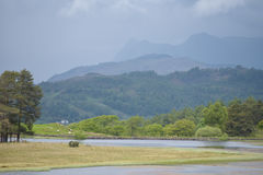 Moss Eccles Tarn on Claife Heights. English Lake District Royalty Free Stock Photo