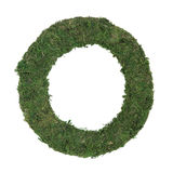 Moss Frame Royalty Free Stock Image