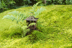 Moss garden view in Arashiyama, Kyoto Stock Image