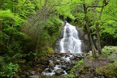 Moss Glen Falls, Vermont, de V.S. royalty-vrije stock afbeelding