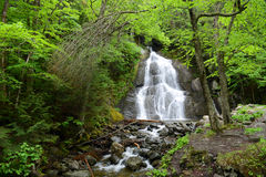 Moss Glen Falls, Vermont, los E.E.U.U. Imagen de archivo libre de regalías