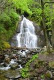 Moss Glen Falls, Vermont, U.S.A. Fotografie Stock Libere da Diritti