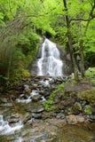 Moss Glen Falls, Vermont, USA lizenzfreie stockfotos