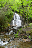 Moss Glen Falls, Vermont, USA Royalty Free Stock Photos