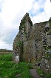 Moss Growing en las ruinas de la abadía de Hore Foto de archivo libre de regalías
