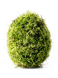 Moss-grown egg Royalty Free Stock Photo