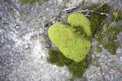 Moss Heart Imagenes de archivo