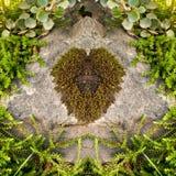 Moss Heart sur une pierre Photographie stock libre de droits