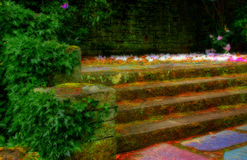 Moss and ivy on stone steps Royalty Free Stock Photo