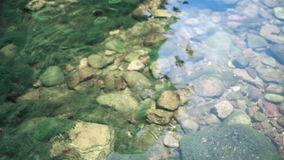 Moss with little rocks under water in waterfall area stock footage