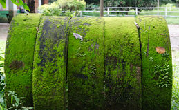 Moss. Old concrete drainage pipes with moss Stock Photos