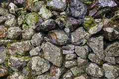 Moss on the old rok wall Stock Image
