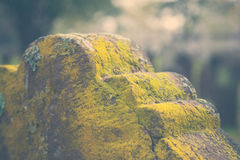 Moss on Old Tombstone. A closeup of moss on an old tombstone in a cemetery Stock Photography