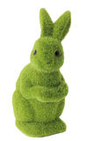 Moss Rabbit royalty free stock image
