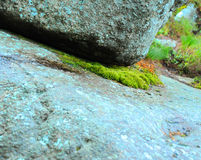 Moss & Rock. Bluish rock with fresh green moss growing underneath Royalty Free Stock Photos