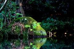 Moss Rock i ett damm royaltyfria bilder