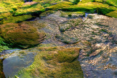 Moss Rocks Royalty Free Stock Photo